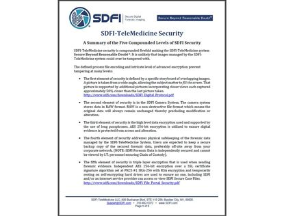 A Summary of the Five Compounded Levels of SDFI Security.